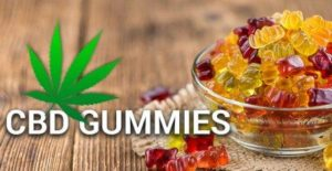 Fruit Flavored CBD Gummie Products